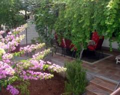 Apartment Bungalo -garden 2