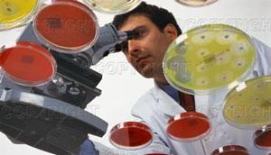 Mikrobiološki laboratorij